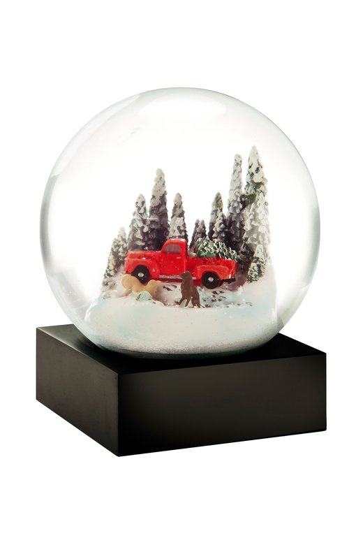 Kar Küresi Snow Globe Red Truck W/ Dog 868188275587